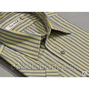Рубашка прямая DAVE RABALL 002948s фото