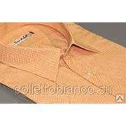 Рубашка прямая DAVE RABALL 002345s фото