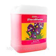 Удобрение FloraBloom GHE 5 L минеральное для гидропоники и почвы фото