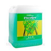 Удобрение FloraGro GHE 5 L минеральное для гидропоники и почвы фото