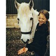 Корма и подкормки для лошадей фото