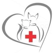 Ветеринарні послуги фото