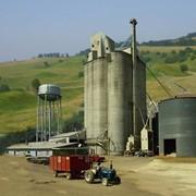 Переработка сельскохозяйственной продукции фото