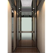 Кабины лифтовые Danae professional фото