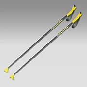 Лыжные палки AL Spine (155) фото