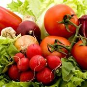 Микроудобрение для овощных культур фото