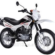Мотоцикл Fury 150 фото