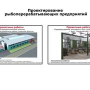 Проектирование рыбоперерабатывающих предприятий (рыбопереработка) фото
