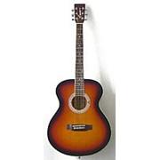 Акустическая гитара Emio SW-100 фото