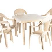Набор пластиковой мебели Пинто-4+Элпа, 6шт. фото