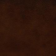 Кожа мебельная Esquimau фото