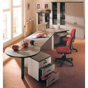 Комплект офисной мебели фото