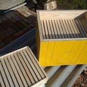 Пчелиный улей фото