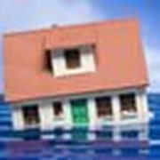 Оценка при заливе (затоп) квартиры фото