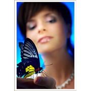 Дни рождения - поздравление бабочками фото
