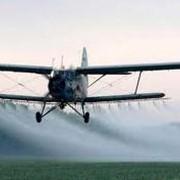 Услуги авиации в сельском хозяйстве. фото