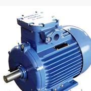 Рудничный электродвигатель АИМУР160М8 фото