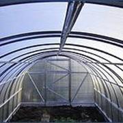 Теплица под поликарбонат (західна 6 ) 3х6х2 фото