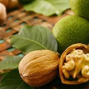 Масло грецкого ореха (Walnut oil) фото
