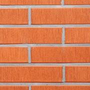 Облицовочный пустотелый кирпич Lode ASAIS JANKA красный штриховой 250x85x65 фото