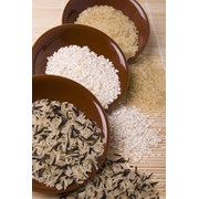 Рисовая крупа фото