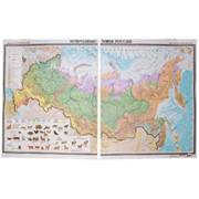 Учебные карты фото