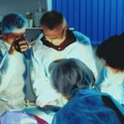 Хирургия ветеринарная в Алматы фото