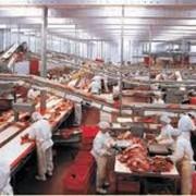 Оборудование мясоперерабатывающее фото