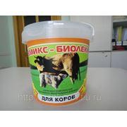 Премикс - Биолеккс для КРС и Дойных коров (300 г.) (сут.нор. 5г.-5руб.) фото