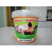 Премикс - Биолеккс для Свиней (300 г.) (сут.нор. 5г.-5руб.) фотография