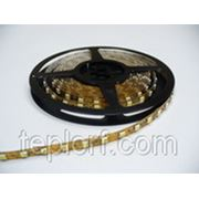 Светодиодная лента Geniled GL-30SMD5050RGBE фото