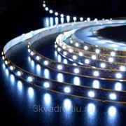 Светодиодная лента на самоклеющейся основе, влагозащищенная, цветная. 5 метров фото