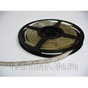 Светодиодная лента влагозащищенная 120SMD3528Е фото