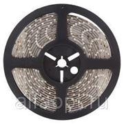 Светодиодная лента Geniled GL-60SMD5630WE фото