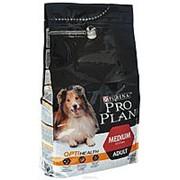 Pro Plan 3кг Medium Adult Сухой корм для взрослых собак средних пород Курица фото