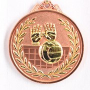 Медаль рельефная волейбол - бронза фото