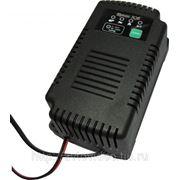 Зарядное устройство для аккумуляторов Кулон 305 фото