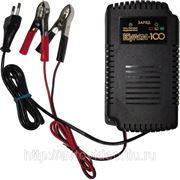 Зарядное устройство для аккумуляторов Кулон 100 фото