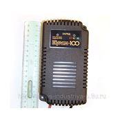Зарядное устройство Кулон 100 фото