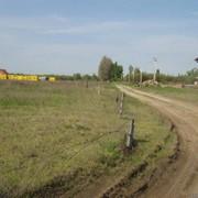 Белогородка участок 5соток. Риелтор: Василий фото