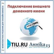 Подключение внешнего доменного имени (без стоимости домена) для сайта на tiu.ru фото