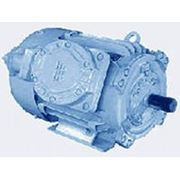 Взрывозащищенные асинхронные электродвигатели серии 2ВР 2ВР250S2, 2ВР280М6 фото