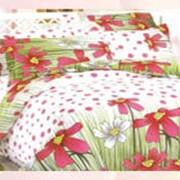 Двуспальный постельный набор Ранфос, (бязь Голд), Вдохновение, код товара 22-3 фото