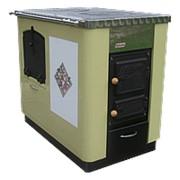 Кухонный котел центрального отопления Kalvis - 4AS фото