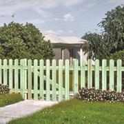 Забор Штакетный фото