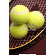 Услуги тренера по большому теннису фото