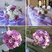 Полный комплекс свадебных услуг Проведение свадеб фото