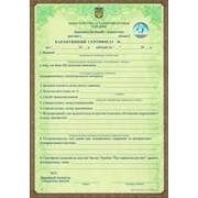 Фитосанитарный сертификат, карантинный сертификат фото
