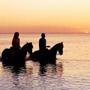 Конные прогулки, Услуги при самодеятельном туризме, Активный, Туристические услуги фото