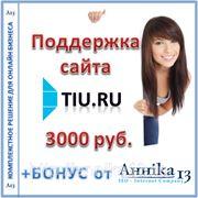 Аутсорсинговая поддержка сайта Tiu.ru, от 8 часов в месяц фото